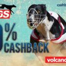 Dogs Cashback Jul