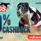 Dogs Cashback Avgust