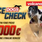 Dogs Race Check Jul