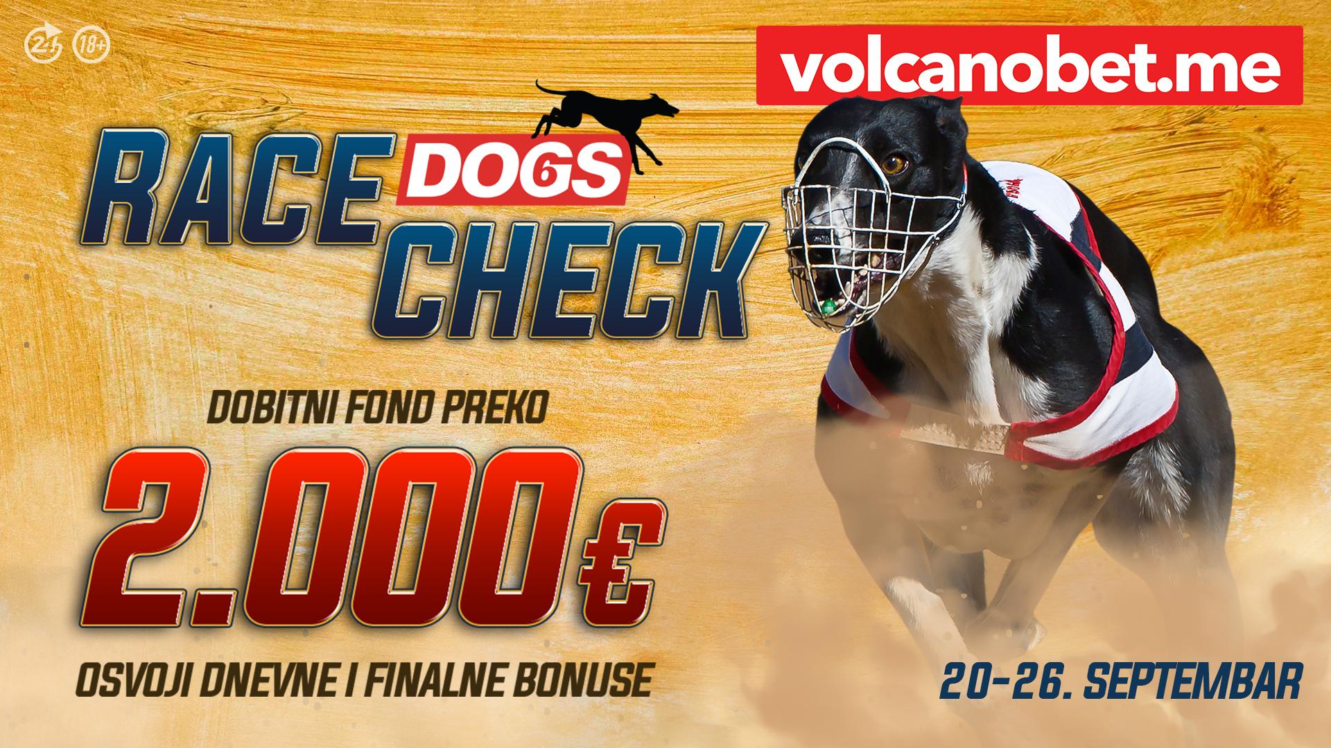 Dogs Race Check Septembar
