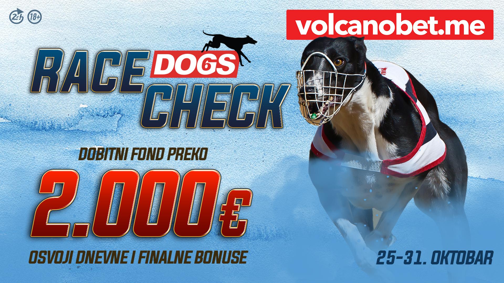Dogs Race Check Oktobar